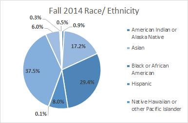 2014 Race Ethnicity.png
